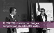 PLFSS 2018 : baisse de charges, suppression du CICE, RSI, aides