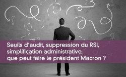 Seuils d'audit, suppression du RSI,  simplification administrative