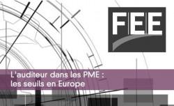 L'auditeur dans les PME : les seuils en Europe