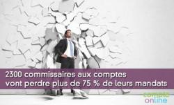 2300 commissaires aux comptes vont perdre plus de 75 % de leurs mandats