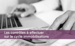 Immobilisations