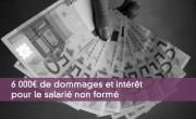 6 000¤ de dommages et intérêt pour le salarié non formé