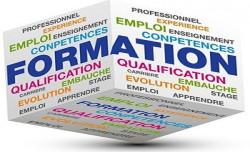 Contrat de professionnalisation en cabinet les salaires - Grille salaire contrat de professionnalisation ...