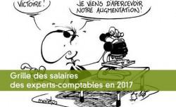 Grille des salaires des experts-comptables en 2017