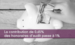 Honoraires d'audit 2017