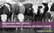 Règlement ANC 2019-01 : immobilisations et stocks de biens vivants