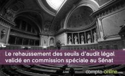 Le rehaussement des seuils d'audit légal des comptes validé en commission spéciale au Sénat