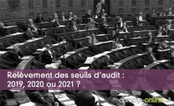 Relèvement des seuils d'audit : 2019, 2020 ou 2021 ?