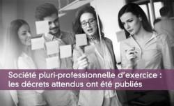 Société pluri-professionnelle d'exercice : les décrets attendus ont été publiés