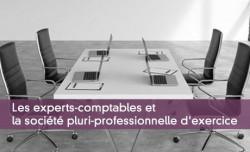 Les experts-comptables et la société pluri-professionnelle d'exercice