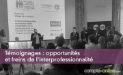 Témoignages : opportunités et freins de l'interprofessionnalité