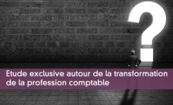 Etude exclusive autour de la transformation  de la profession comptable